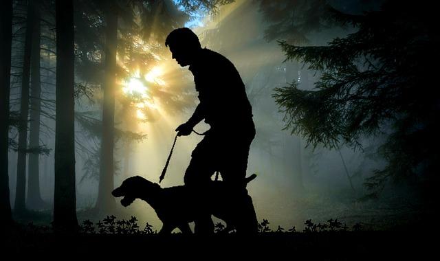 gps til hunde